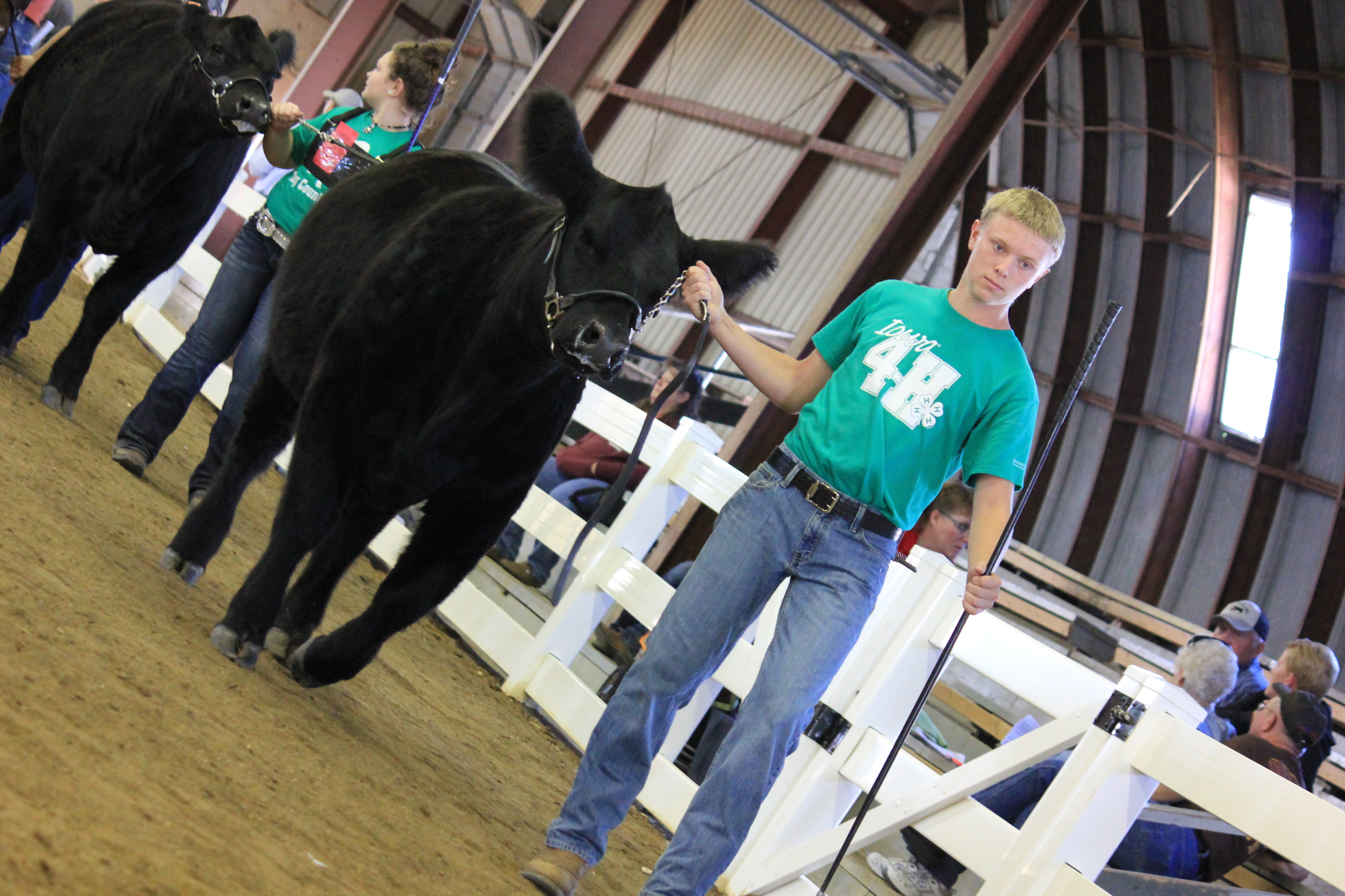 4-H at the Iowa State Fair | 4-H Youth Development