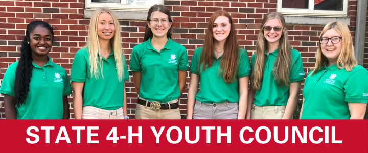 state 4-H youth council