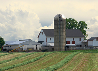 farm with white barns and silo