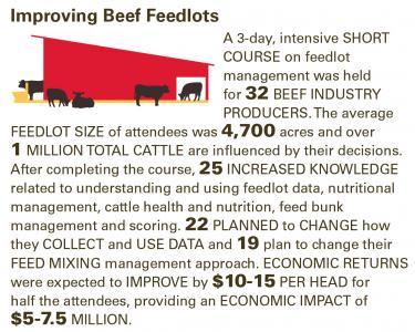 beef feedlots.