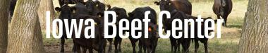 Beef Staff Page