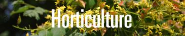 Horticulture Staff Page