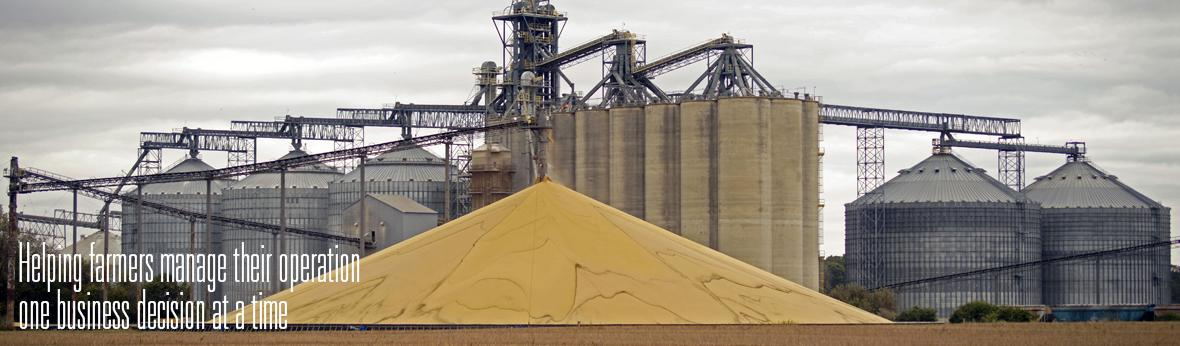 pile of corn sitting at co-op site