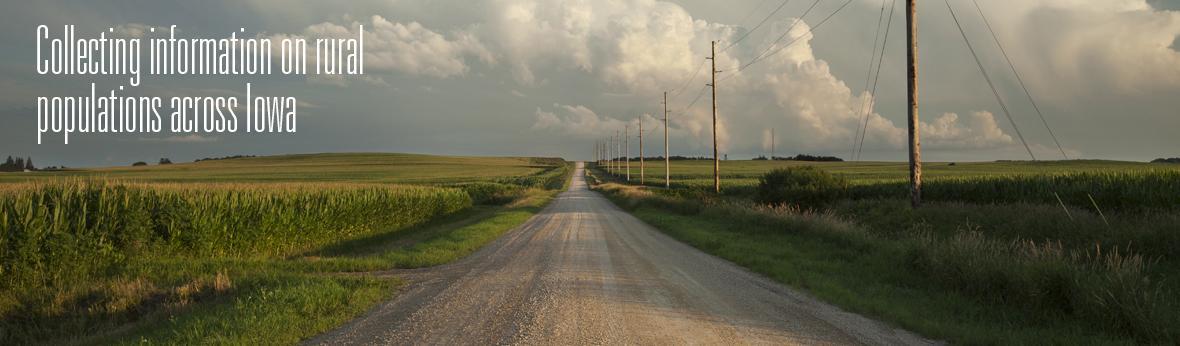 looking down rural gravel road in summer