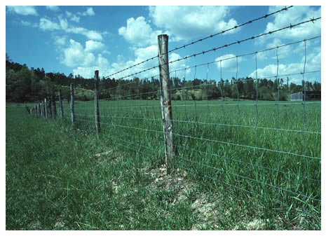 Estimated Costs For Livestock Fencing Ag Decision Maker