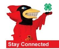 Cy Stay Connected