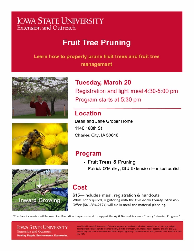 Fruit Tree Pruning Flyer