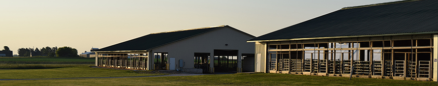 image of dairy barn