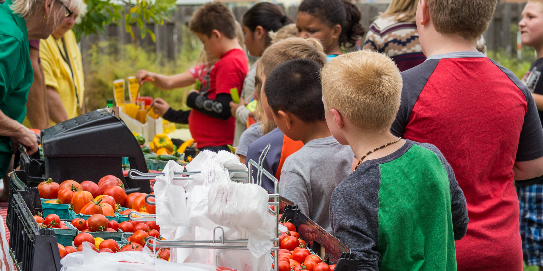 Children standing in line in front of tomatoes