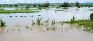 flooding farmland.
