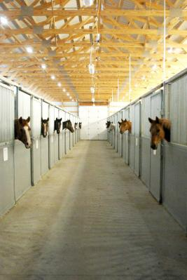 Equine Learniing Center