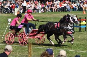 Scurry Driving Championship