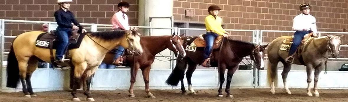 Iowa State Fair 4-H Horse Show