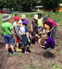 National Farm to Cafeteria Conference offers tour of Madison youth garden projects