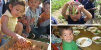 Bringing farm to school to early childhood; planning meeting Oct. 20 in Madrid