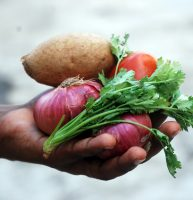 Iowa communities examine their strengths and challenges in building local food systems