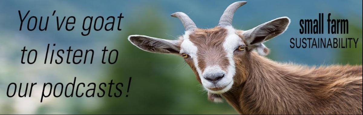goat-_podcast 2