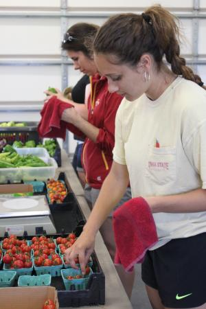 Jade and Carissa cleaning tomatoes at C. Brown Gardens