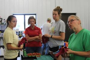 Learning how to wipe tomatoes at C. Brown Gardens