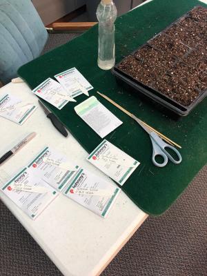 seed prep