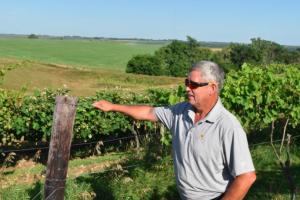 Barry, Tucker Hill owner in vineyard