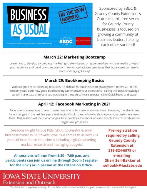 Business as Usual Series Flyer