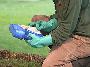 Person wearing gloves  and holding a container of pesticide.