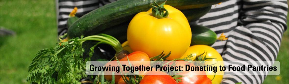 Growing Together Project: Donating to Food Pantries