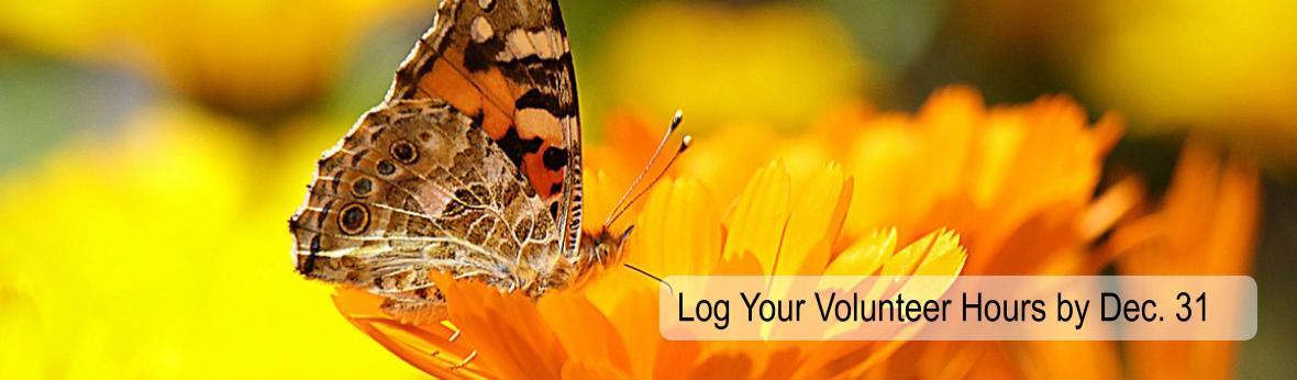 Log your volunteer hours by December 31st