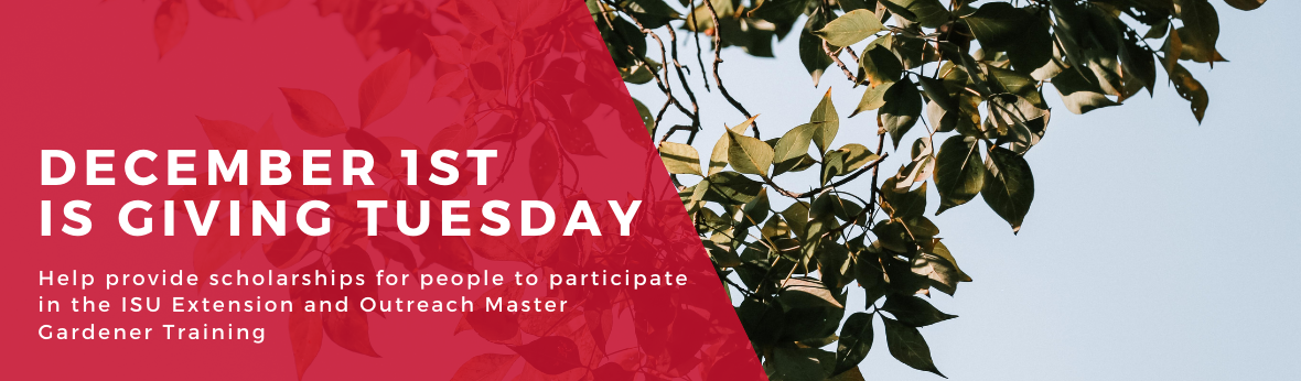 December 1st is Giving Tuesday - Help provide scholarships for people to participate in the ISU Extension and Outreach Master Gardener Training