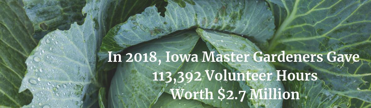 In 2018, Iowa Master Gardeners gave 113,392 volunteer hours worth $2.7 million