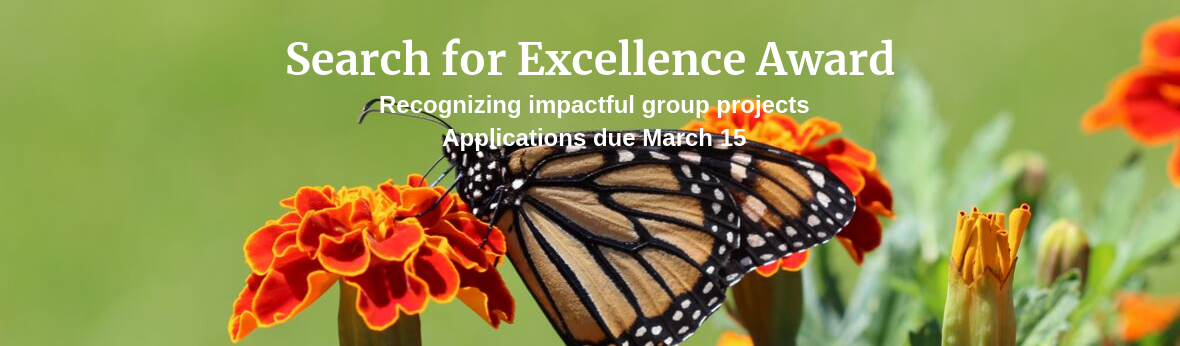 Search for Excellence Award, Recognizing impactful group projects, Applications due March 15
