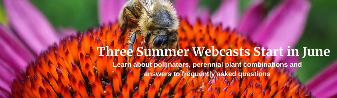 Three Summer Webcasts Start in June
