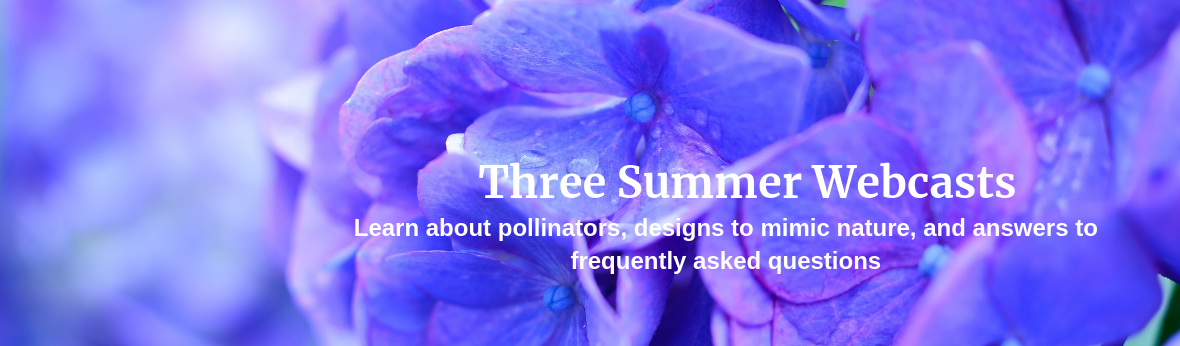 Three Summer Webcasts - Learn about pollinators, designs to mimic nature, and answers to frequently asked questions
