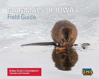 cover of Mammals of Iowa featuring a muskrat sitting on ice.