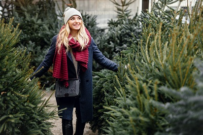 woman looking for Christmas tree to buy at outdoor tree shop by shipskyy/stock.adobe.com.