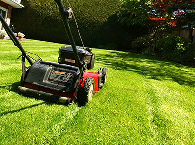 lawn mowing by Horticulture/stock.adobe.com.