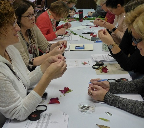 trainees examining flower parts.