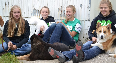 four 4-H dog exhibitors and their animals.