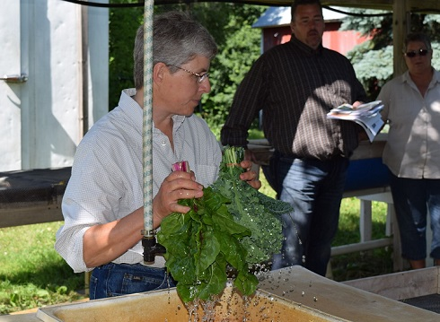 grower demonstrating proper produce washing method.