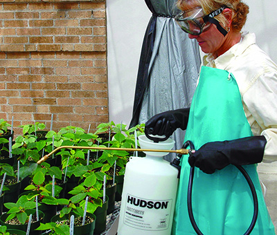 spraying pesticide on plants in a greenhouse.