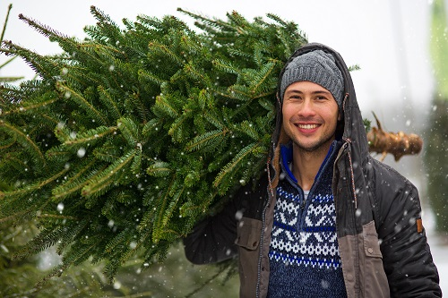 Man Buying Christmas Tree by pikselstock/stock.adobe.com.