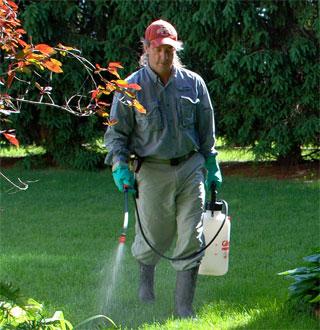 Lawn Caretaker of broadleaf weeds.