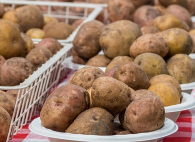Yard and Garden: When Potatoes Have Skin Problems | News