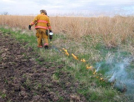 man lighting a controlled prairie burn.