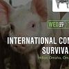pig survivability graphic.