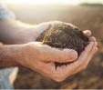 hands holding soil.
