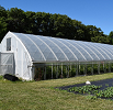 farm greenhouse and garden.