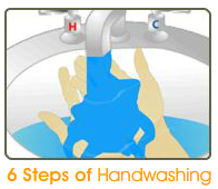 6 steps of handwashing