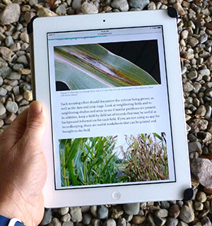 field crop scouting online learning tool